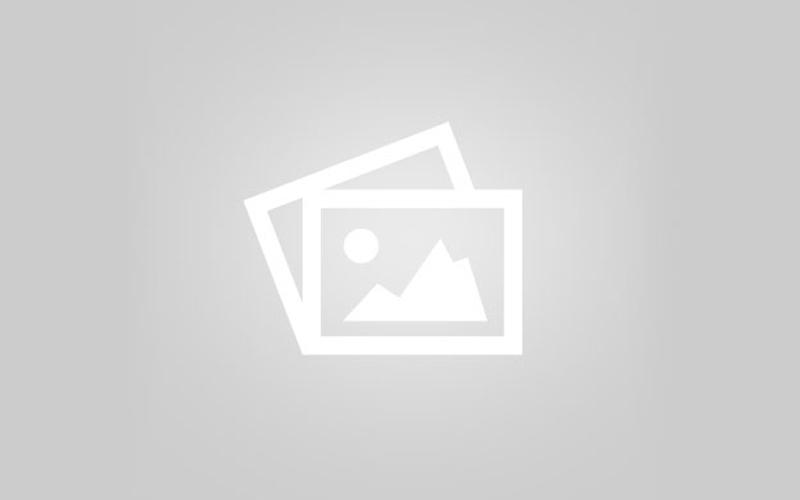 Раскопки кургана Чмырёва могила Ф. А. Брауном