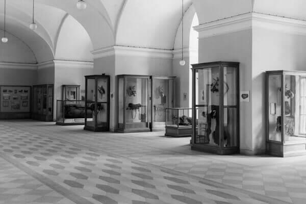 Открытие новых залов постоянной экспозиции ОИПК